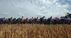The pack of riders cycles on its way during the 163.5 km fourth stage of the Tour de France cycling race from Le Touquet-Paris-Plage to Lille